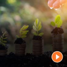Grünes Geld für Umwelt und Wirtschaftlichkeit Fördermittel für Unternehmen